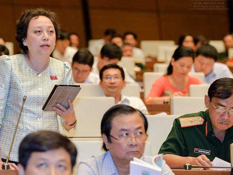Luat ve hoi: Co quan soan thao xin doi lai - Anh 1