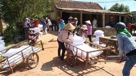 Vinh Phuc trich 800 trieu dong ho tro nguoi dan Quang Binh, Ha Tinh - Anh 1