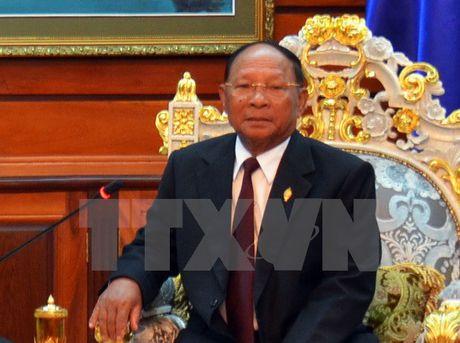 Thuc day hop tac cong tac Mat tran hai nuoc Viet Nam-Campuchia - Anh 1