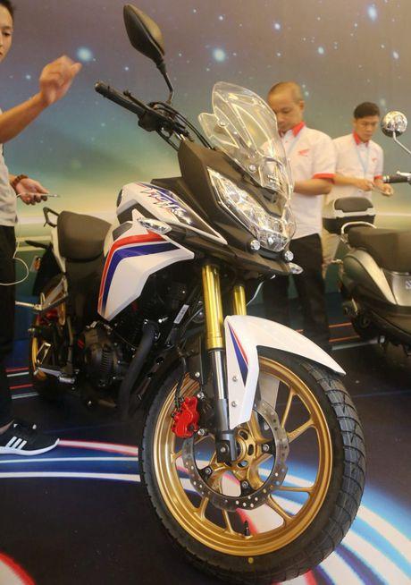Honda CBF190X 2017 - Chiec xe da muc dich, gia ca phai chang - Anh 3