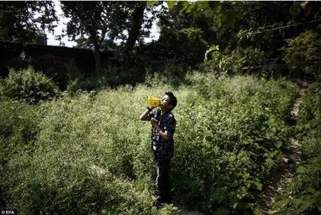 Kinh hoang cach giam doi cua tre em ngheo Nepal - Anh 8