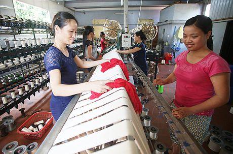 'Tan muc' lang uom to bang tay noi tieng nhat Viet Nam - Anh 10