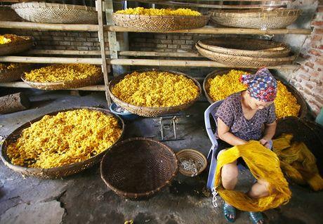 'Tan muc' lang uom to bang tay noi tieng nhat Viet Nam - Anh 4