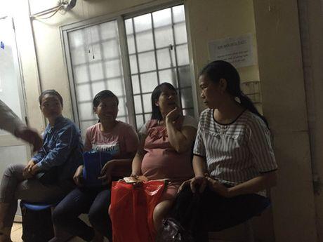 Bo Y te nang muc canh bao ve Zika: Nhieu thai phu van tho o - Anh 2