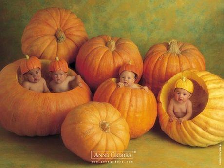 Nhung hinh anh Halloween de thuong den kho tin - Anh 5