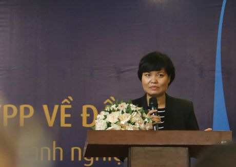Phap luat Viet Nam ve co ban da co su tuong thich voi cac cam ket TPP - Anh 1