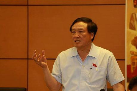 'De' ra mot co quan chuyen boi thuong la lam bo may phinh to - Anh 1