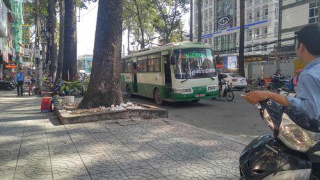 Tai xe xe buyt rut dao dam nguoi giua Sai Gon - Anh 2