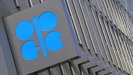 OPEC co dao nguoc duoc xu huong giam gia cua dau mo? - Anh 1