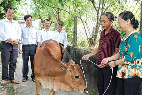 Ninh Thuan: Hon 5,9 ty dong Quy vi nguoi ngheo 2016 - Anh 1