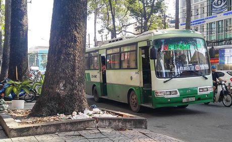 Tai xe xe buyt rut dao dam nguoi tren pho Sai Gon - Anh 4