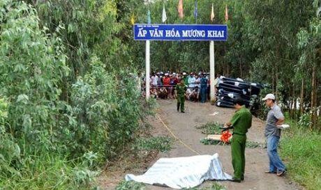 Giet nguoi o Sai Gon dem xuong Long An dot xac de phi tang - Anh 1