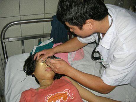Cong bo ket qua ho tro thai doc chi tai Hung Yen - Anh 1