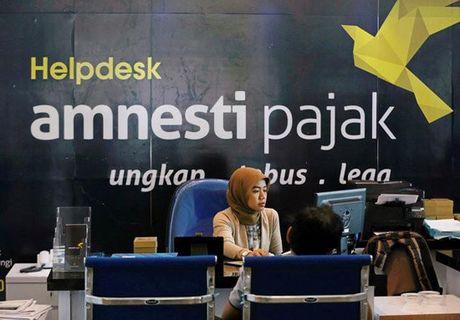 An xa thue tao nguon luc phat trien kinh te Indonesia - Anh 1
