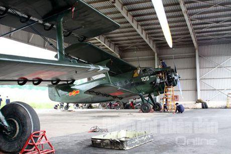 Viet Nam se hien dai hoa 'may bay ba gia' An-2 voi su tro giup cua Nga? - Anh 1