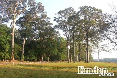 Kham pha Angkor bang xe dap - Anh 2