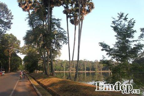 Kham pha Angkor bang xe dap - Anh 3