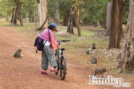 Kham pha Angkor bang xe dap - Anh 9