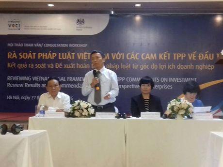 TPP thuc day cai cach the che phap ly ve dau tu - Anh 1