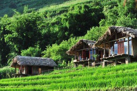 Top homestay chuan 'Tay' o Sapa nhat dinh phai check - Anh 6