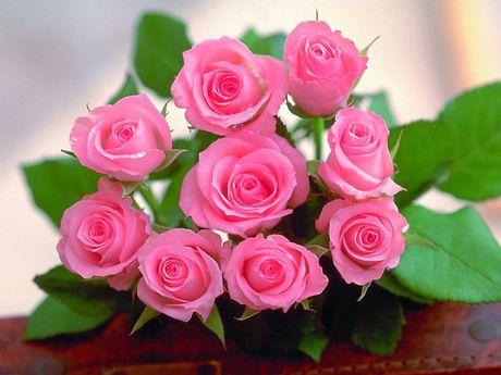 10 bai thuoc chua dau dau tu hoa - Anh 4