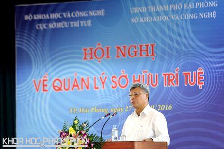 Cong tac so huu tri tue 2015: Hon 80% so luong don da duoc xu ly - Anh 1