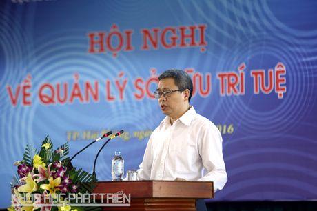 Cong tac so huu tri tue 2015: Hon 80% so luong don da duoc xu ly - Anh 3