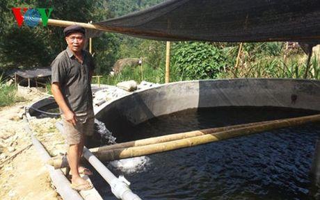 Ca hoi o Lao Cai chet hang loat: Ganh nang len vai nguoi dan - Anh 1