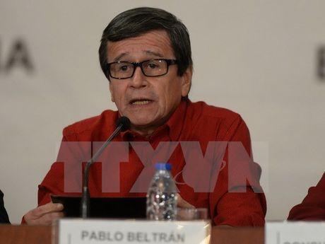 Colombia: ELN tuyen bo se thuc hien cam ket phong thich con tin - Anh 1