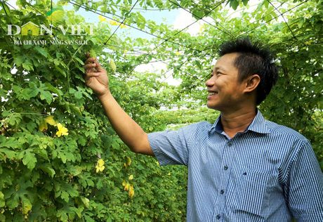 Chang ky su quyet dua kho qua rung sach len pho - Anh 1