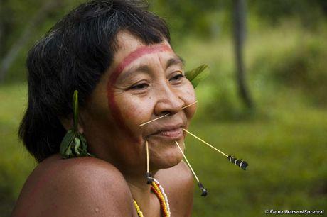 He lo bi an ve tho dan trong rung ram Amazon - Anh 7