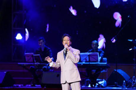 "Che Linh noi loi yeu khien MC Ky Duyen ""muon lam vo thu 5"" - Anh 11"