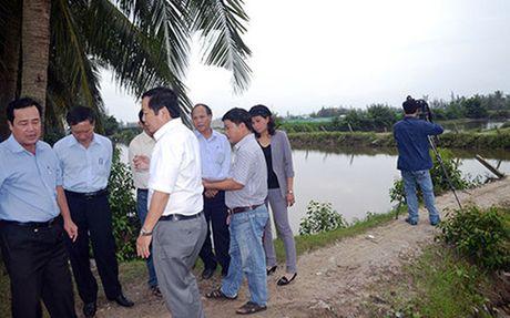 Quang Nam: Dieu chinh nhieu hang muc du an nuoi thuy san tap trung - Anh 1