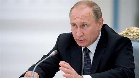 Putin bac yeu cau tai khong kich Aleppo - Anh 1