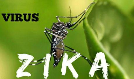 Binh Duong tang cuong phong, chong dich do virus Zika den tan xa, phuong - Anh 1