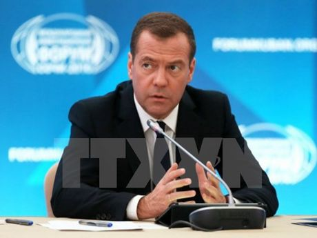 Thu tuong Nga Dmitry Medvedev du kien tham Israel va Palestine - Anh 1