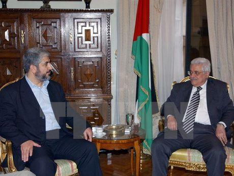 Dang Fatah cua ong Abbas sap to chuc dai hoi dau tien sau 7 nam - Anh 1