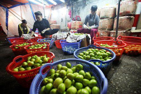 Kham pha khu cho rau qua dem tap nap, re nhat o Ha Noi - Anh 3