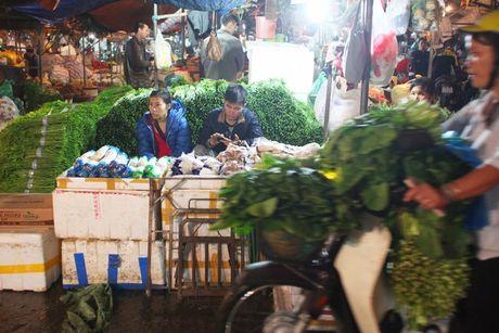 Kham pha khu cho rau qua dem tap nap, re nhat o Ha Noi - Anh 7