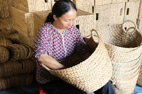 Nghe dan beo tay xuat ngoai o Ninh Binh - Anh 1