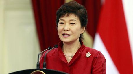 Tong thong Han Quoc Park Geun-hye co y dinh tu chuc - Anh 1