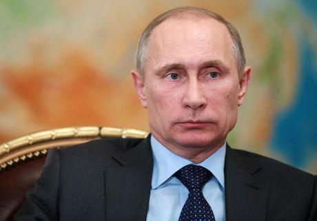TT Putin cuong quyet tu choi noi lai khong kich o Aleppo - Anh 1