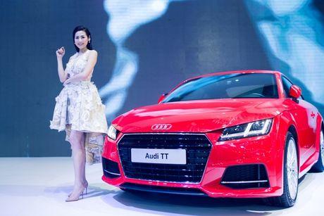Toan canh dan xe va cac dai su Audi tai VIMS 2016 - Anh 4
