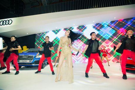 Toan canh dan xe va cac dai su Audi tai VIMS 2016 - Anh 5