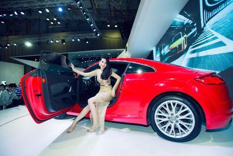 Toan canh dan xe va cac dai su Audi tai VIMS 2016 - Anh 6