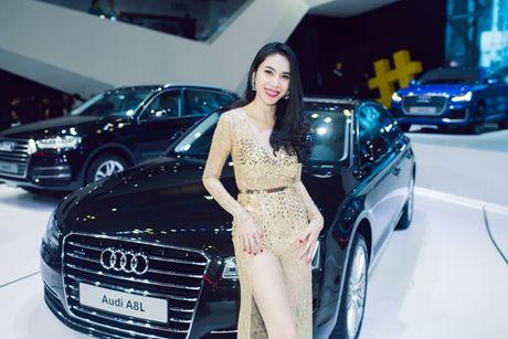 Toan canh dan xe va cac dai su Audi tai VIMS 2016 - Anh 9
