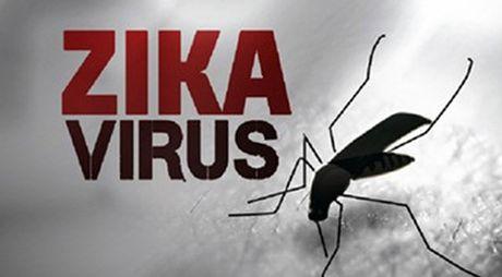 Chinh phu yeu cau chu dong phong, chong dich benh do vi rut Zika - Anh 1
