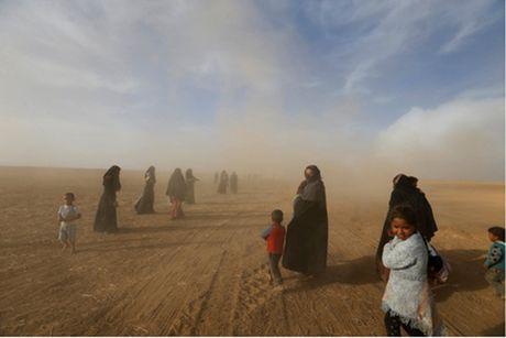 The 'tien thoai luong nan' cua nguoi dan tai chao lua Mosul - Anh 1