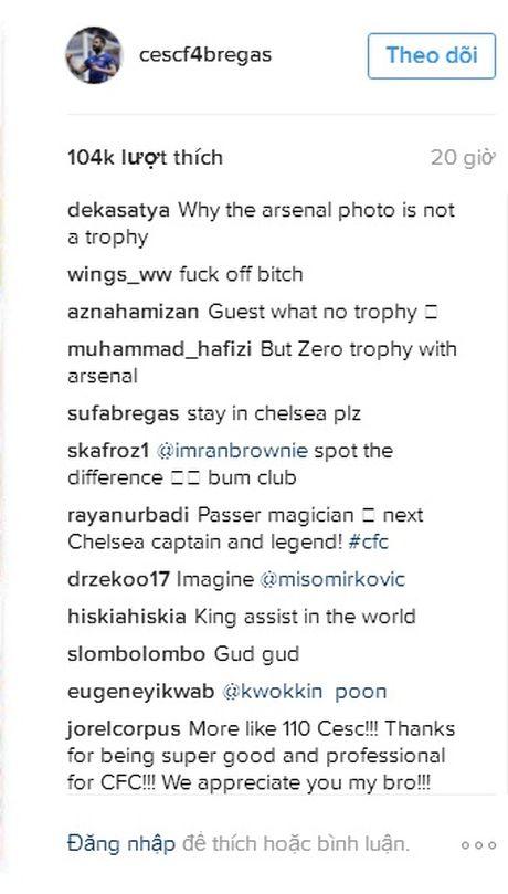 Dang anh 'dim hang' Arsenal, Fabregas khien cac CDV nong mat - Anh 3