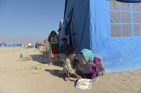 Chinh phu Afghanistan mat kiem soat 2% lanh tho trong 3 thang - Anh 1